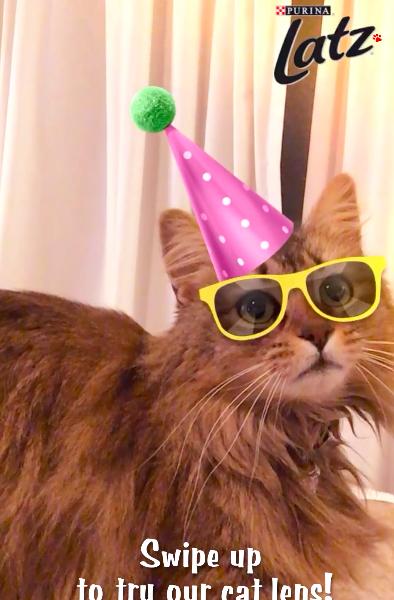 's Werelds eerste branded Snapchat Cat Lens voor rebranding-campagne
