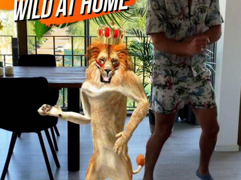 Bouw thuis een Koningsdagfeestje met AXE 'Wild at Home'